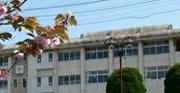 津山東高等学校看護科の写真
